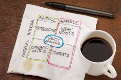 Leadership development, business development, how to prioritize, how to set goals